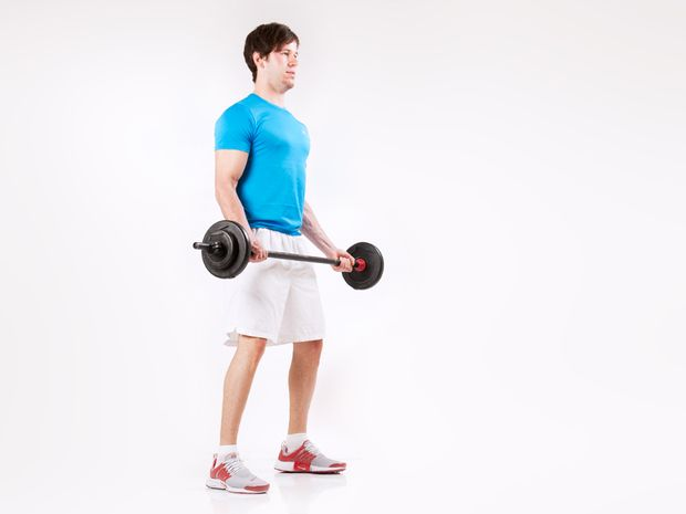 biceps curls with Barbells